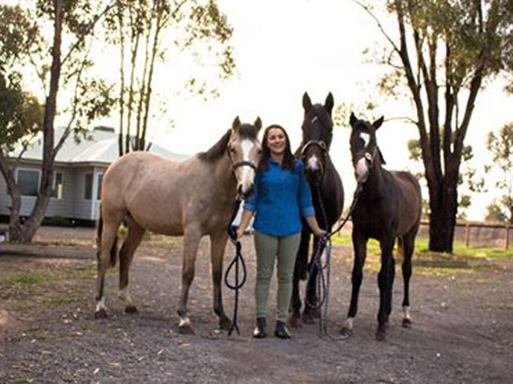 Horses of all shapes, sizes and ages need a mineral supplement or fortified hard-feed.